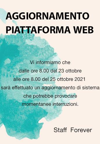 Interruzione sito web